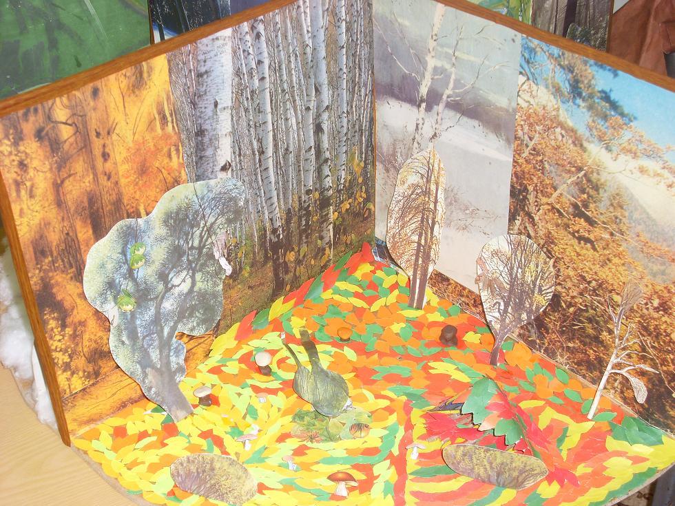 Макеты природных зон для детского сада своими руками 38